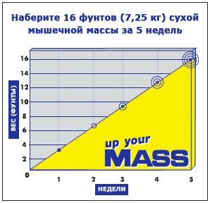Up Your Mass - график набора массы