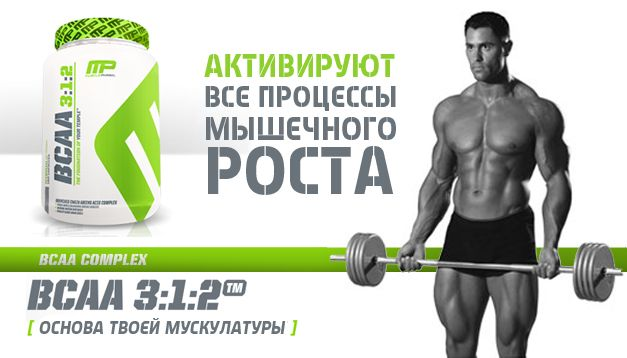 купить musclepharm bcaa 240