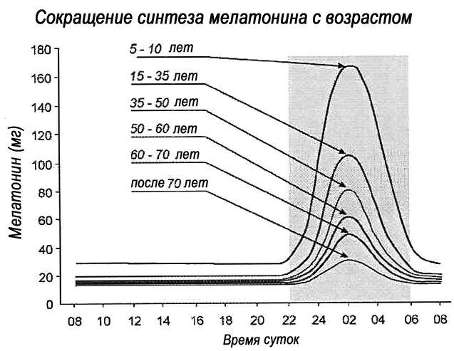Суточный синтез мелатонина