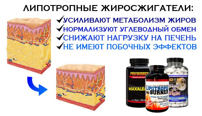 Купить липотропики. Липотропные жиросжигатели - Fit-Health