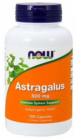 Astragalus 500 mg NOW